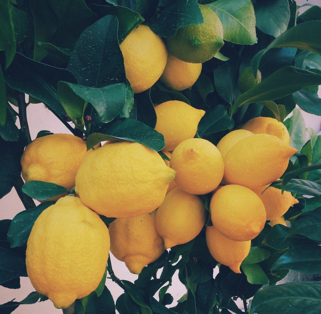 citroen picture